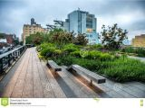 Public Park In Manhattan High Line Park Urban Public Park On An Historic Freight