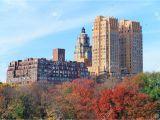 Public Park In Manhattan New York Central Park In New York City Manhattan Midtown In Autumn with