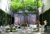 Public Park In Manhattan Paley Park Parks