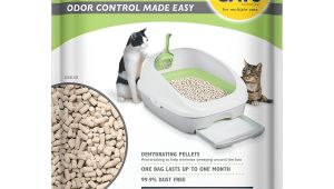 Purina Tidy Cats Breeze Litter Box System Reviews Amazon Com Purina Tidy Cats Breeze Pellets Refill Cat Litter 6