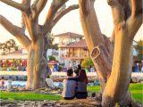 Que Ver En San Diego Eeuu Hotels In San Diego Ab 27 Finde Billige Hotels Momondo Hotelsuche