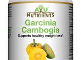 Rapid Trim Ultra forskolin 350 Amazon Com Ayunutrients Garcinia Cambogia 70 Hca Pure Extract 120
