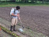 Red Dragon Flame Weeder Red Dragon Backpack Flame Weeder Johnny 39 S Selected Seeds
