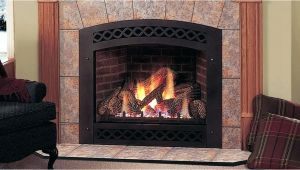 Reviews Of Direct Vent Gas Fireplace Inserts Gas Fireplace Insert Reviews Best Gas Fireplace Insert