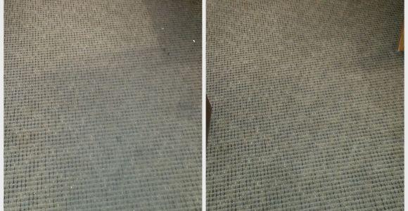 Rug Cleaning Midlothian Va Carpet Cleaning Midlothian Va Citrusolution