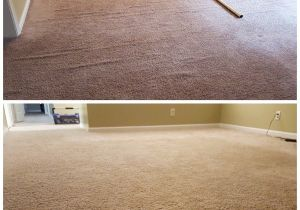 Rug Cleaning Midlothian Va Midlothian Carpet Stretching Steamline Carpet Cleaning