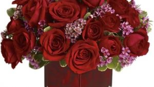 Same Day Flower Delivery fort Wayne Indiana fort Wayne Florist Flower Delivery by Broadview Florist