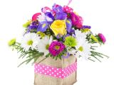 Same Day Flower Delivery fort Wayne Indiana Pink Polka Dots Local Delivery Only Lopshire Flowers