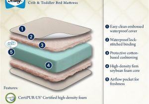 Sealy Omni Plush Crib Mattress Sealy soybean Foam Core Crib Mattress Review Omni Reviews