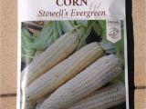 Seed Savers Exchange Promo Code 15 Variety Corn Seed Savers Exchange organic Heirloom Non Gmo