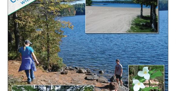Silver Stag Woods N Water Sharbot Lake Silver Lake Provincial Park 2018 Information Guide by