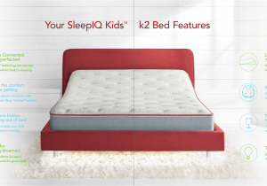 Sleep Number Bed Limited Edition 10000 Smart Outlet User Manual Select Comfort Corp
