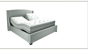 Sleep Number Bed Weight Limit Adjustable Bed Frame Reviews Tasasylum org