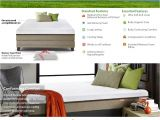Snuggle Home 14 Deluxe Height Memory Foam Mattress Reviews Amazon Com Live Sleep Ultra King Mattress Gel Memory Foam