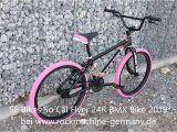 So Cal Flyer 2019 Se Bikes so Cal Flyer 24r Bmx Bike 2019 Clipfail Com