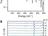 Spectrum Labs Quick Fix Plus Near Me A Linear Cobalt Ii Complex with Maximal orbital Angular Momentum