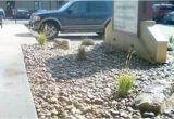 Sprinkler Repair fort Collins after fort Collins Office Park2012 Clc Landscape and