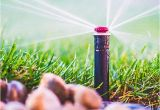 Sprinkler System Repair fort Collins fort Collins Greeley Landscaping Sprinkler