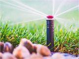 Sprinkler System Repair fort Collins fort Collins Greeley Landscaping Sprinkler