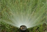 Sprinkler System Repair fort Collins How to Blow Out or Drain Sprinkler System before Freeze