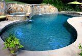 Tahoe Blue Pebble Tec Custom Gunite Pool with Beach Entry Tanning Ledge Spa and