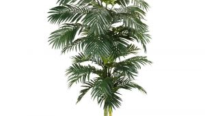 Tall Fake Palm Trees for Sale Nearly Natural 8 Ft Green Golden Cane Palm Silk Tree 5326 the