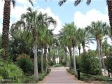 The Palms at Nocatee Hoa 148 Palm island Way In Coastal Oaks at Nocatee Ponte Vedra