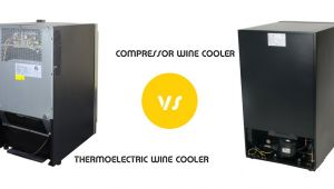 Thermoelectric Vs Compressor Wine Cooler thermoelectric Vs Compressor Wine Cooler