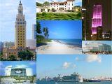 Tienda De Mascotas En Miami Florida Miami Wikipedia