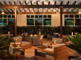 Tienda De Mascotas En Miami Hilton Garden Inn Miami Dolphin Mall Florida Opiniones