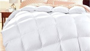 Top Rated Comforters Down Alternative Best Rated Down Comforter Best Down Comforters top Rated