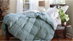 Top Rated King Down Comforter Amazing Interior the Brilliant In Addition to Beautiful