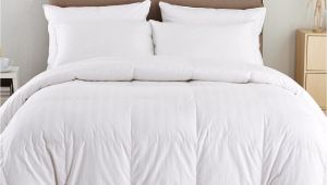 Top Rated Lightweight Down Comforters Puredown Lightweight Down Comforter Reviews Wayfair