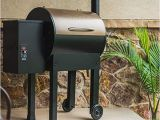 Traeger Renegade Elite Customer Reviews Traeger Renegade Elite Review is Grilling Food Healthier