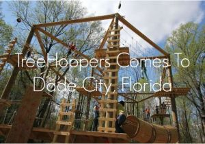 Tree toppers Dade City Treehoppers Comes to Dade City Florida