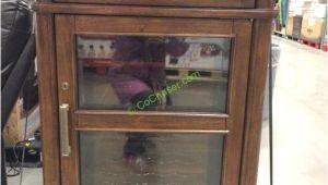 Tresanti Wine Cooler Cabinet Costco Tresanti Wine Cabinet with 24 Bottle Cooler Costcochaser