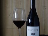 True north Coolers Wine Glass Shop at Don Revy