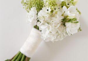 Types Of Filler Flowers Winter Flowers for Weddings