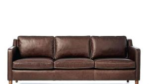 Types Of Leather Couches for Dogs Types Of sofas Types Of sofas top Couches and Chairs thesofa