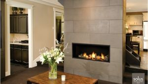 Valor Linear Gas Fireplace Reviews Valor L1 Linear Series Gas Fireplaces Fireplaces