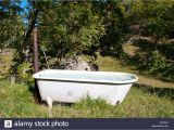 Water Trough Bathtub Ideas Bathtubs Outstanding Water Trough Bathtub Pictures Cool