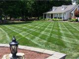Winning Colors Grass Seed Holganix Testimonials Holganix Really Works Sharpe 39 S