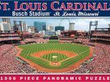 You Pick A Part St Louis Amazon Com Masterpieces Mlb St Louis Cardinals Stadium Panoramic