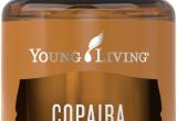 Young Living Catalog 2019 Copaiba Essential Oil Young Living Essential Oils