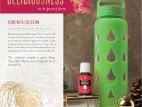 Young Living Holiday Catalog 2019 2016 Christmas Catalogue by Young Living Essential Oils Australia