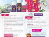 Young Living Holiday Catalog 2019 Monthly Promotions Onedrop